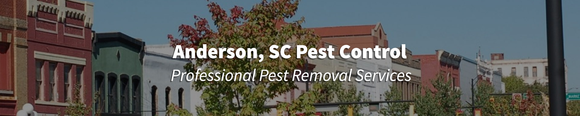 Pest Control in Anderson, South Carolina